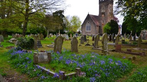 Churches Count on Nature - 5th -13th June